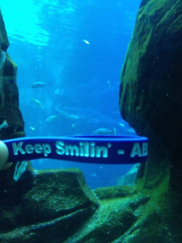@ Georgia Aquarium